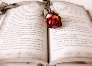 book-419589